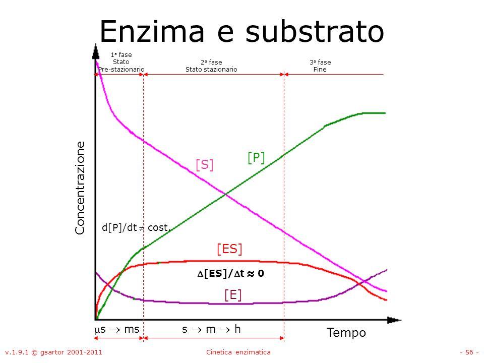 v.1.9.1 © gsartor 2001-2011Cinetica enzimatica- 56 - 1 a fase Stato Pre-stazionario 2 a fase Stato stazionario Enzima e substrato 3 a fase Fine d[P]/d
