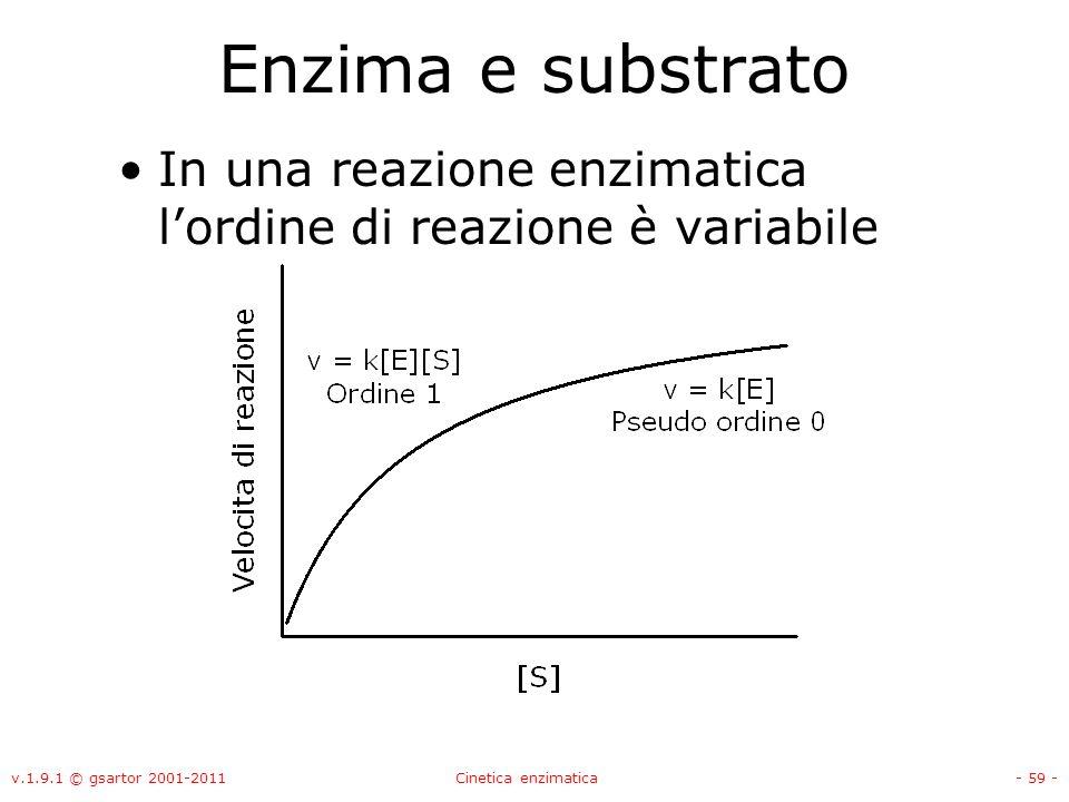 v.1.9.1 © gsartor 2001-2011Cinetica enzimatica- 59 - Enzima e substrato In una reazione enzimatica lordine di reazione è variabile