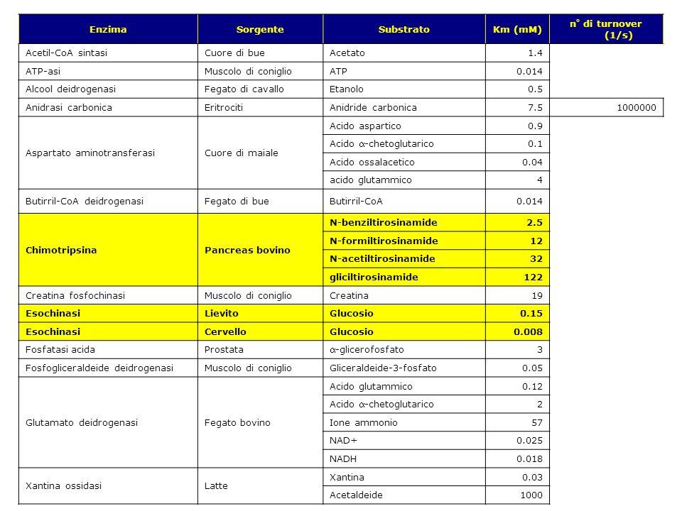 v.1.9.1 © gsartor 2001-2011Cinetica enzimatica- 76 - EnzimaSorgenteSubstratoKm (mM) n° di turnover (1/s) Acetil-CoA sintasiCuore di bueAcetato1.4 ATP-