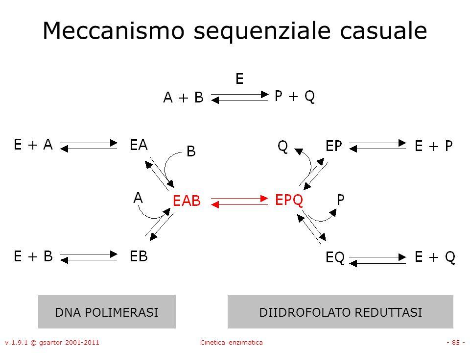 v.1.9.1 © gsartor 2001-2011Cinetica enzimatica- 85 - Meccanismo sequenziale casuale DNA POLIMERASIDIIDROFOLATO REDUTTASI