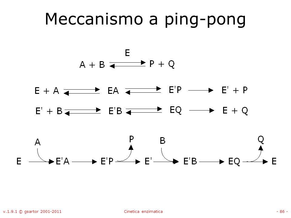 v.1.9.1 © gsartor 2001-2011Cinetica enzimatica- 86 - Meccanismo a ping-pong