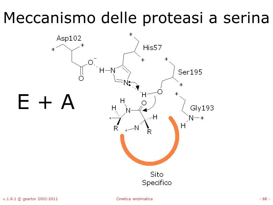 v.1.9.1 © gsartor 2001-2011Cinetica enzimatica- 88 - Meccanismo delle proteasi a serina E + A