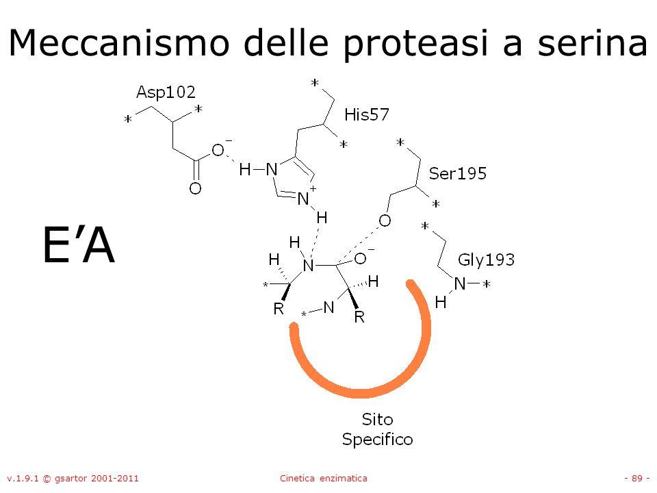 v.1.9.1 © gsartor 2001-2011Cinetica enzimatica- 89 - Meccanismo delle proteasi a serina EA