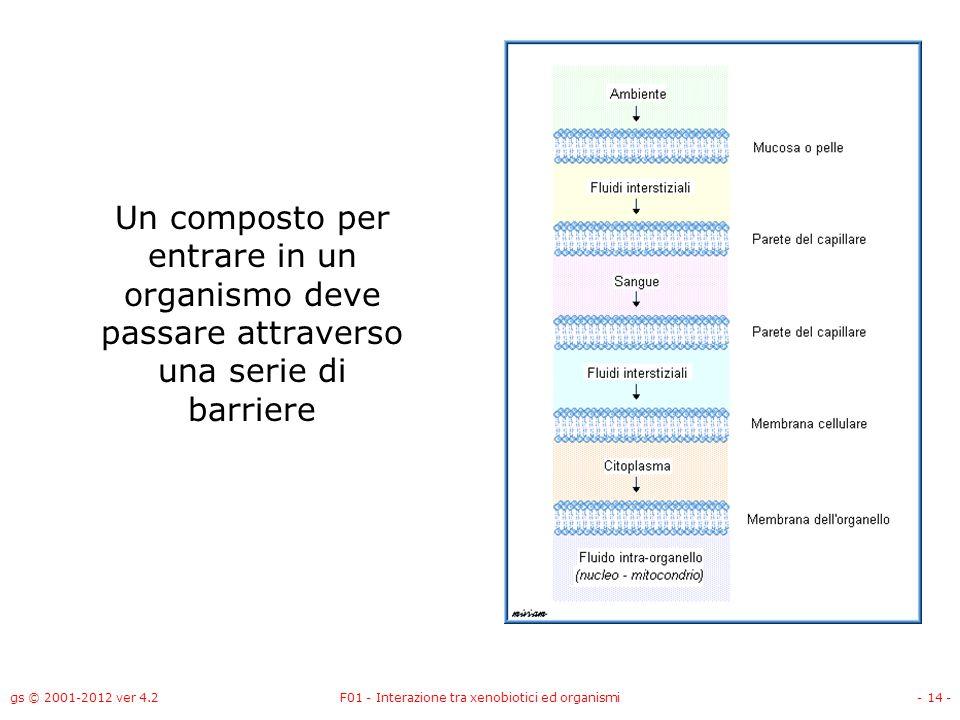 gs © 2001-2012 ver 4.2F01 - Interazione tra xenobiotici ed organismi- 14 - Un composto per entrare in un organismo deve passare attraverso una serie d