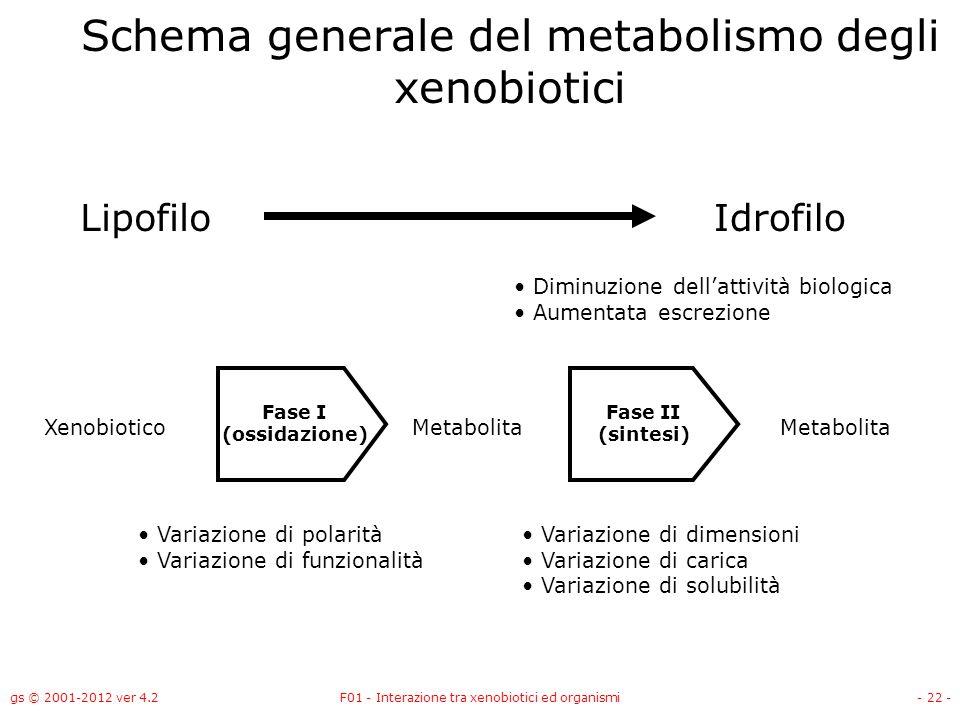 gs © 2001-2012 ver 4.2F01 - Interazione tra xenobiotici ed organismi- 22 - Schema generale del metabolismo degli xenobiotici LipofiloIdrofilo Xenobiot