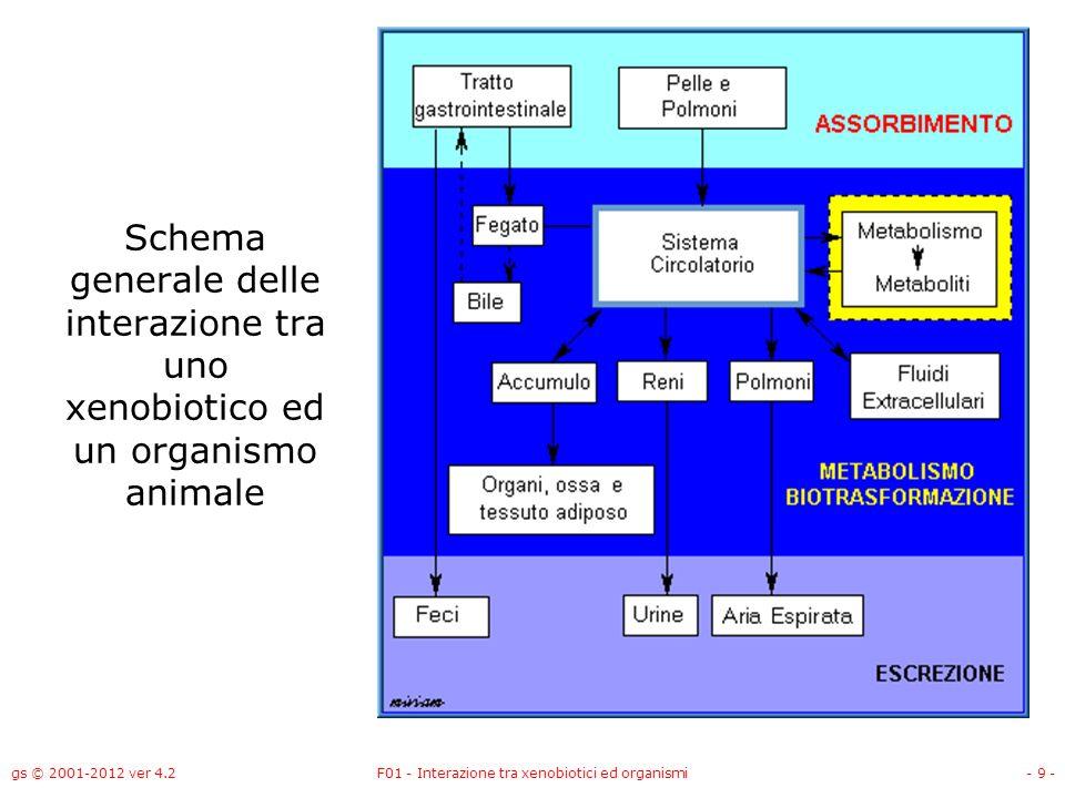 gs © 2001-2012 ver 4.2F01 - Interazione tra xenobiotici ed organismi- 10 - Fattori che influenzano lassorbimento Via di esposizione alla sostanza Concentrazione della sostanza nella zona di contatto Proprietà chimiche e fisiche della sostanza