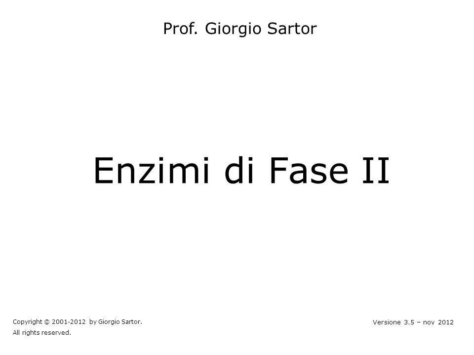 Enzimi di Fase II Prof. Giorgio Sartor Copyright © 2001-2012 by Giorgio Sartor. All rights reserved. Versione 3.5 – nov 2012