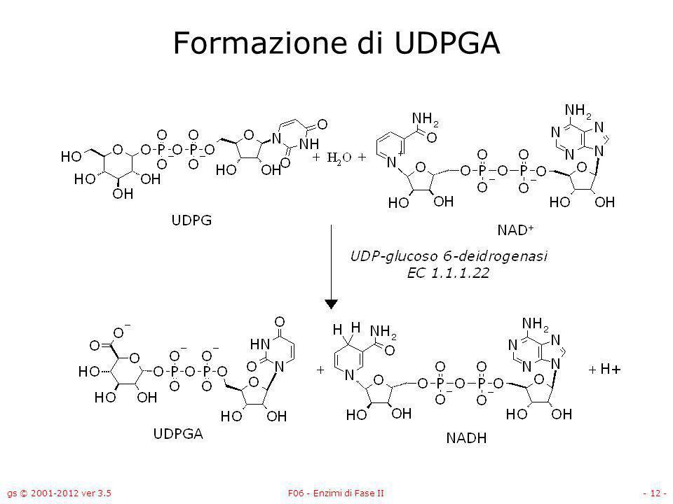 gs © 2001-2012 ver 3.5F06 - Enzimi di Fase II- 13 - UDP-glucoso-6-deidrogenasi NAD +