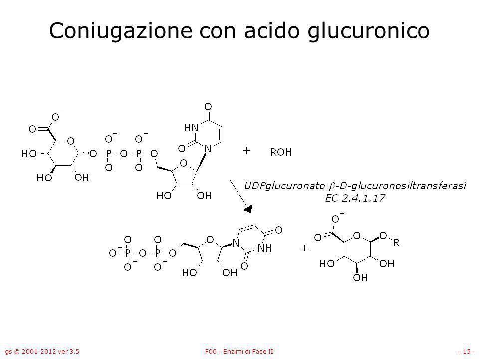 gs © 2001-2012 ver 3.5F06 - Enzimi di Fase II- 16 - -UDP-glucuroniltransferasi Lenzima -UDP-glucuroniltransferasi forma O-, N-, S-, C- glucuronati; –Sei forme nel fegato umano –Il cofattore è UDP-glucuronato –Induttori: fenobarbital, indoli, 3-metilcolantrene, (fumo di sigarette).