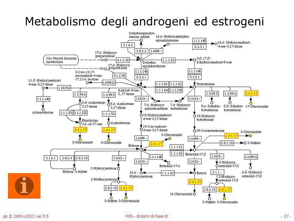 gs © 2001-2012 ver 3.5F06 - Enzimi di Fase II- 18 - Metabolismo delle porfirine