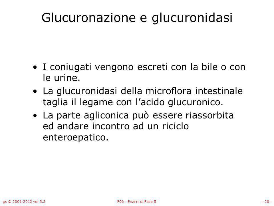 gs © 2001-2012 ver 3.5F06 - Enzimi di Fase II- 21 - Glucuronazione e glucuronidasi Attivazione metabolica di 2,6-dinitrotoluene da parte della glucuronidasi.