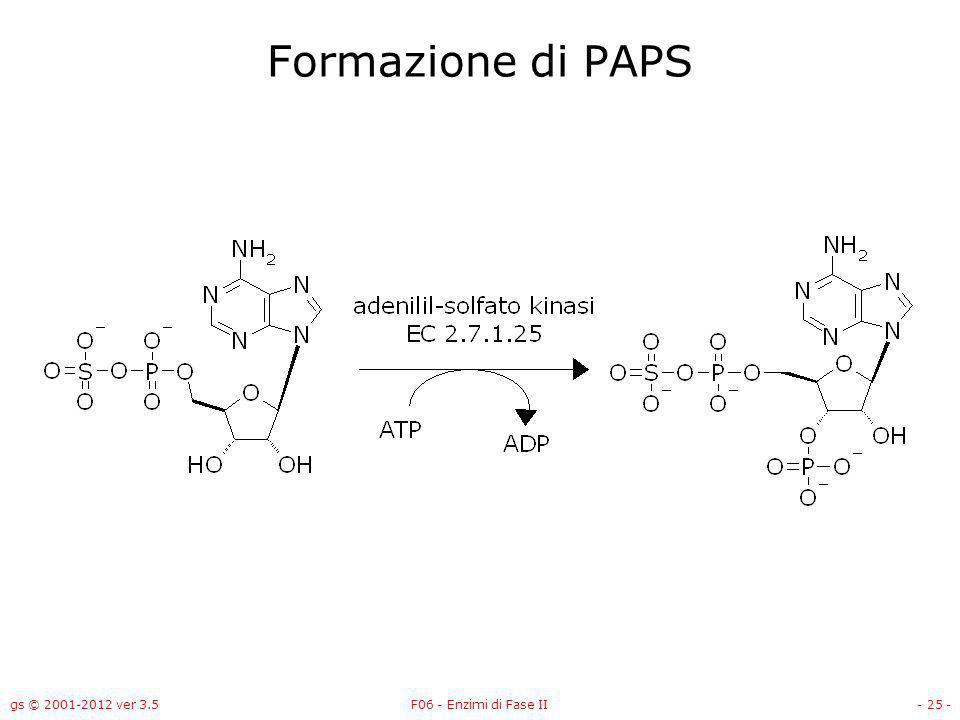 gs © 2001-2012 ver 3.5F06 - Enzimi di Fase II- 26 - Le solfotransferasi sono enzimi ubiquitari Cofattore è 3-fosfoadenosina-5-fosfosolfato (PAPS) Produce esteri solfati altamente idrosolubili Eliminati con urine e bile Xenobiotici e composti endogeni sono solfonati (fenoli, catecoli, amine, idrossilamine) Formazione di solfati