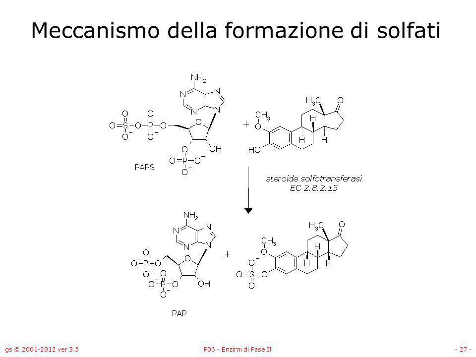 gs © 2001-2012 ver 3.5F06 - Enzimi di Fase II- 28 - Metabolismo degli androgeni ed estrogeni