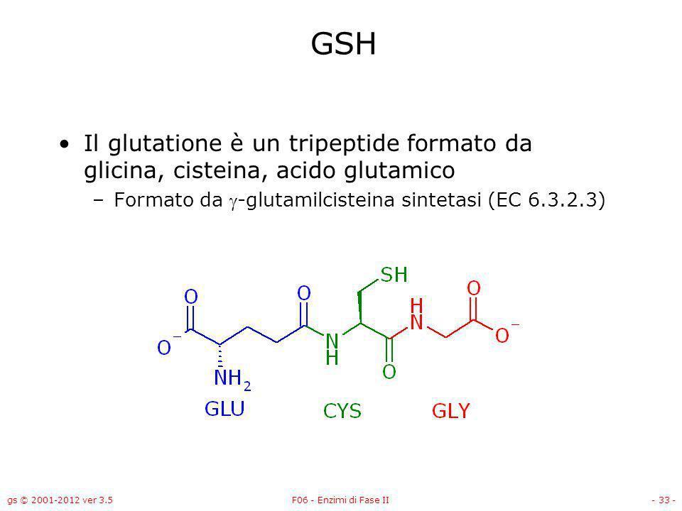 gs © 2001-2012 ver 3.5F06 - Enzimi di Fase II- 34 - Sintesi del GSH