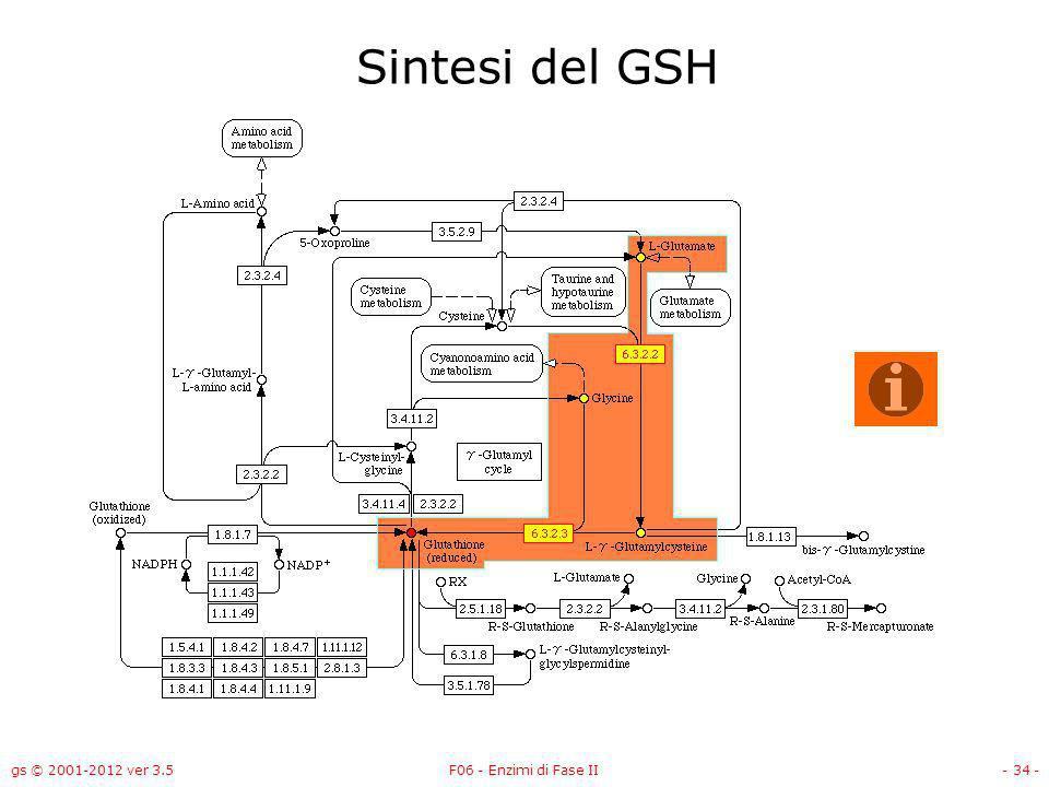 gs © 2001-2012 ver 3.5F06 - Enzimi di Fase II- 35 - Sintesi del GSH