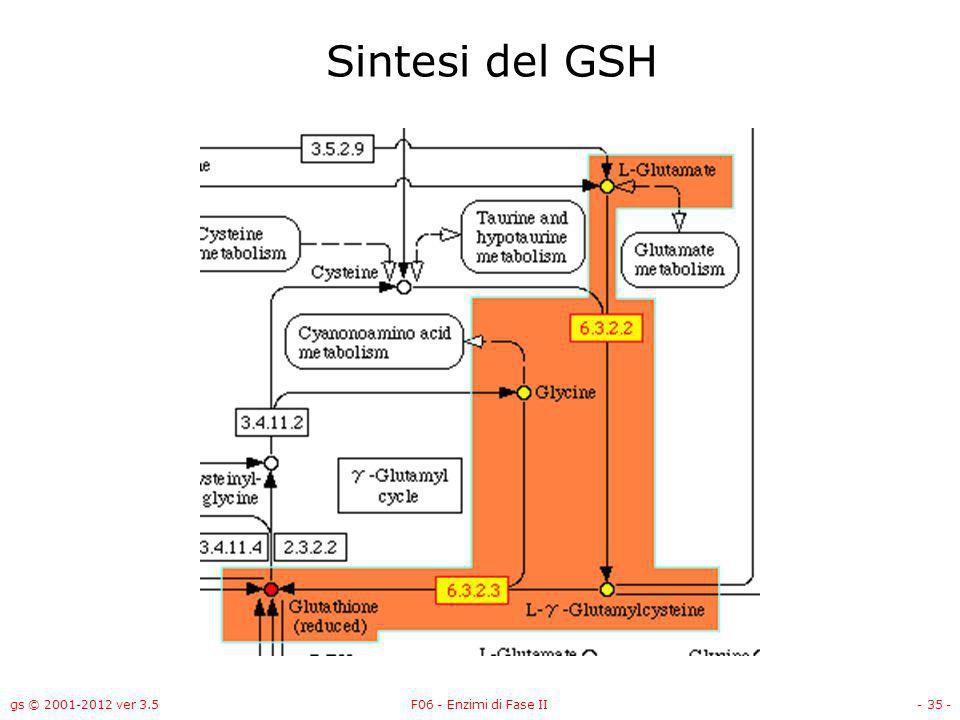 gs © 2001-2012 ver 3.5F06 - Enzimi di Fase II- 36 - Sintesi del GSH