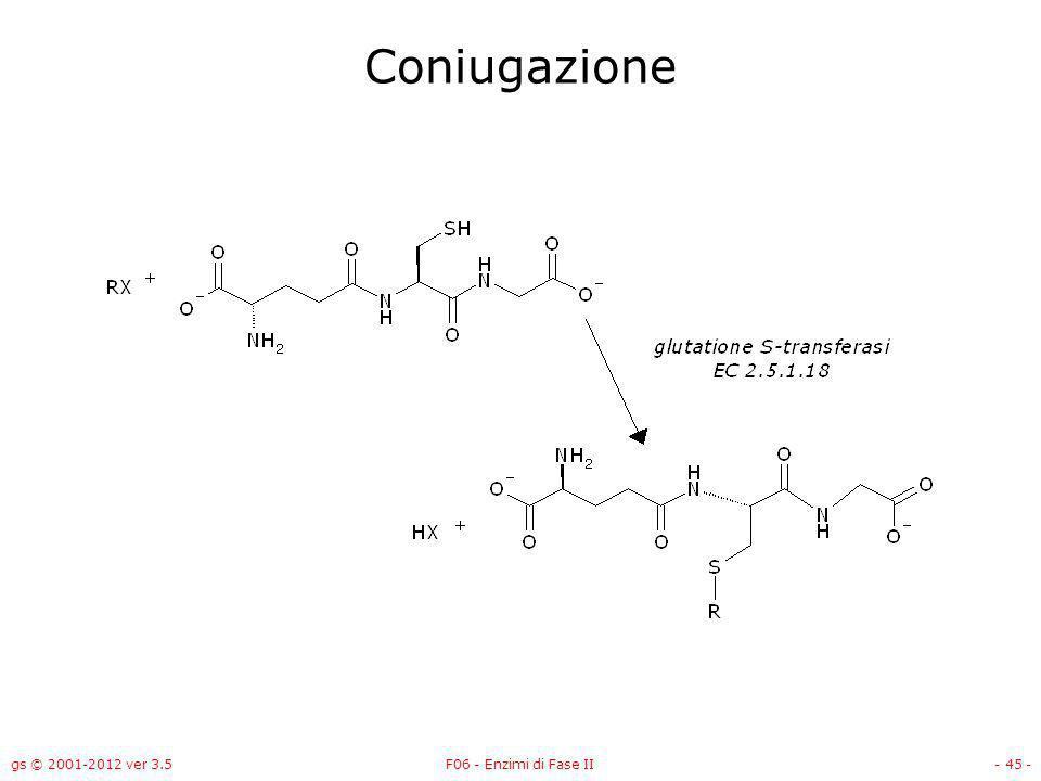 gs © 2001-2012 ver 3.5F06 - Enzimi di Fase II- 46 - Glutatione S-transferasi – EC 2.5.1.18