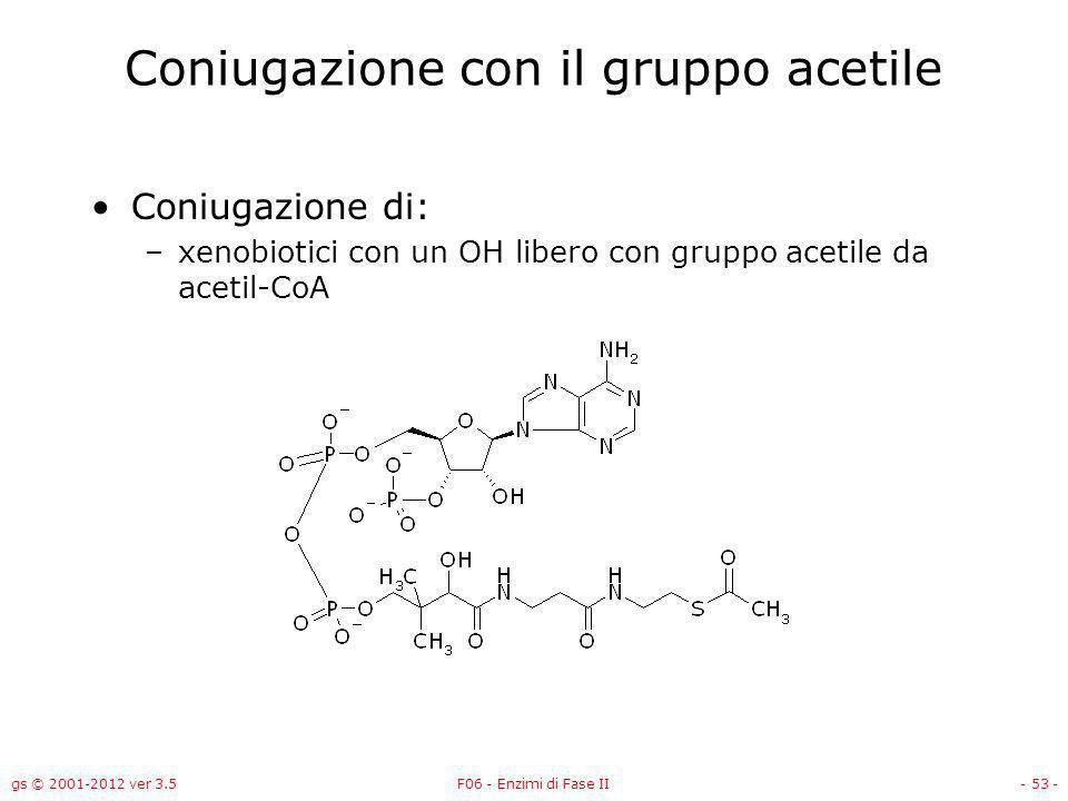 gs © 2001-2012 ver 3.5F06 - Enzimi di Fase II- 54 - Acetilazione Maggiore via di biotrasformazione di amine aromatiche e idrazine Diminuisce la solubilità N-acetiltransferasi (NAT) –Il cofattore è acetil-CoA