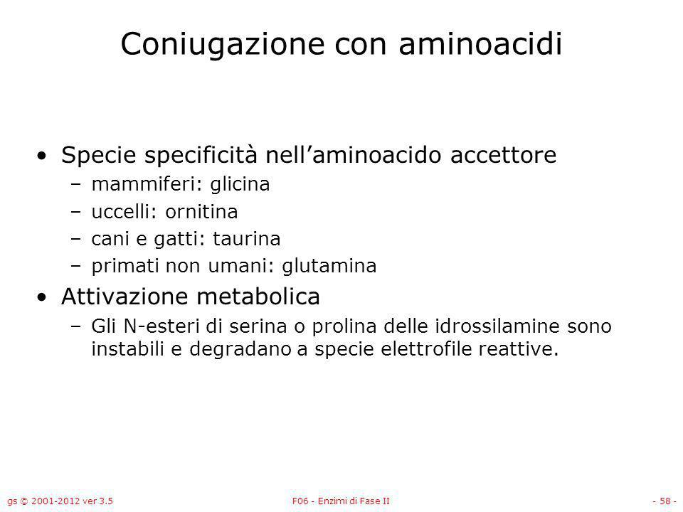 gs © 2001-2012 ver 3.5F06 - Enzimi di Fase II- 59 - Meccanismo della coniugazione con aminoacidi