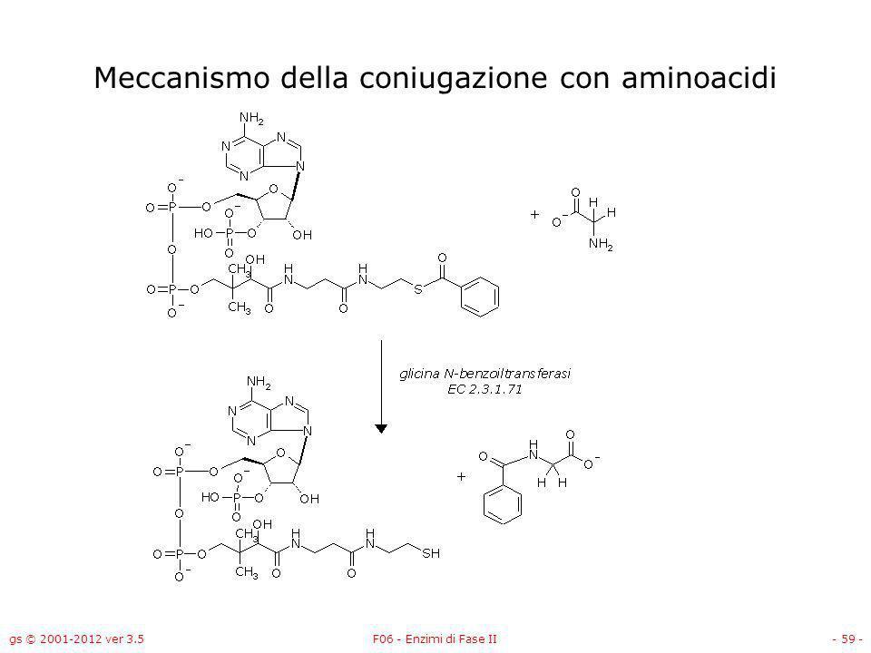 gs © 2001-2012 ver 3.5F06 - Enzimi di Fase II- 60 - Gli enzimi di fase II catalizzano reazioni di: Coniugazione con –Acido glucuronico –Glutatione –Solfato –Acetile –Aminoacidi Metilazione Metallotioneine