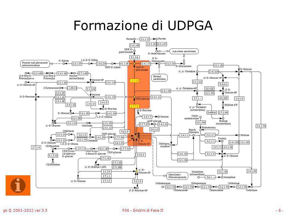 gs © 2001-2012 ver 3.5F06 - Enzimi di Fase II- 7 - Formazione di UDPGA