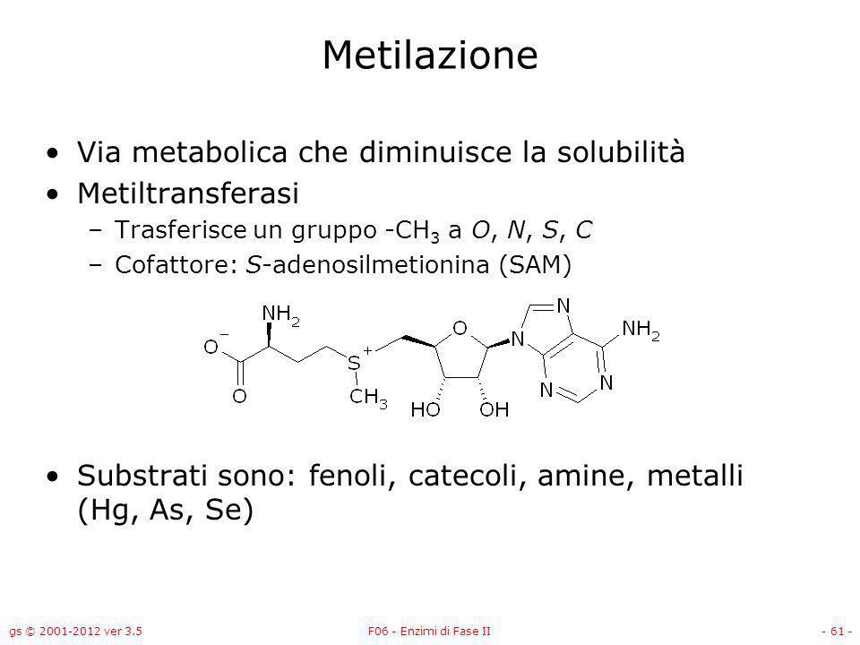 gs © 2001-2012 ver 3.5F06 - Enzimi di Fase II- 62 - Sintesi di S-adenosilmetionina