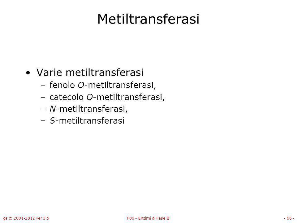gs © 2001-2012 ver 3.5F06 - Enzimi di Fase II- 67 - Meccanismo della metilazione