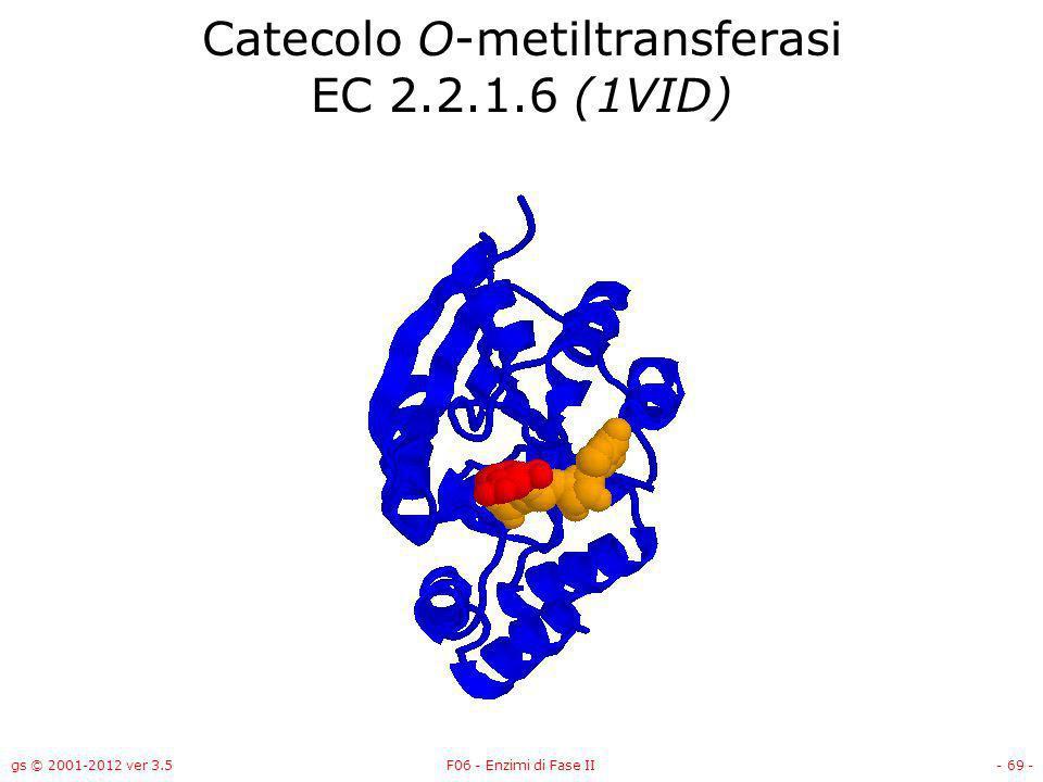 gs © 2001-2012 ver 3.5F06 - Enzimi di Fase II- 70 - Catecolo O-metiltransferasi EC 2.2.1.6 (1VID)