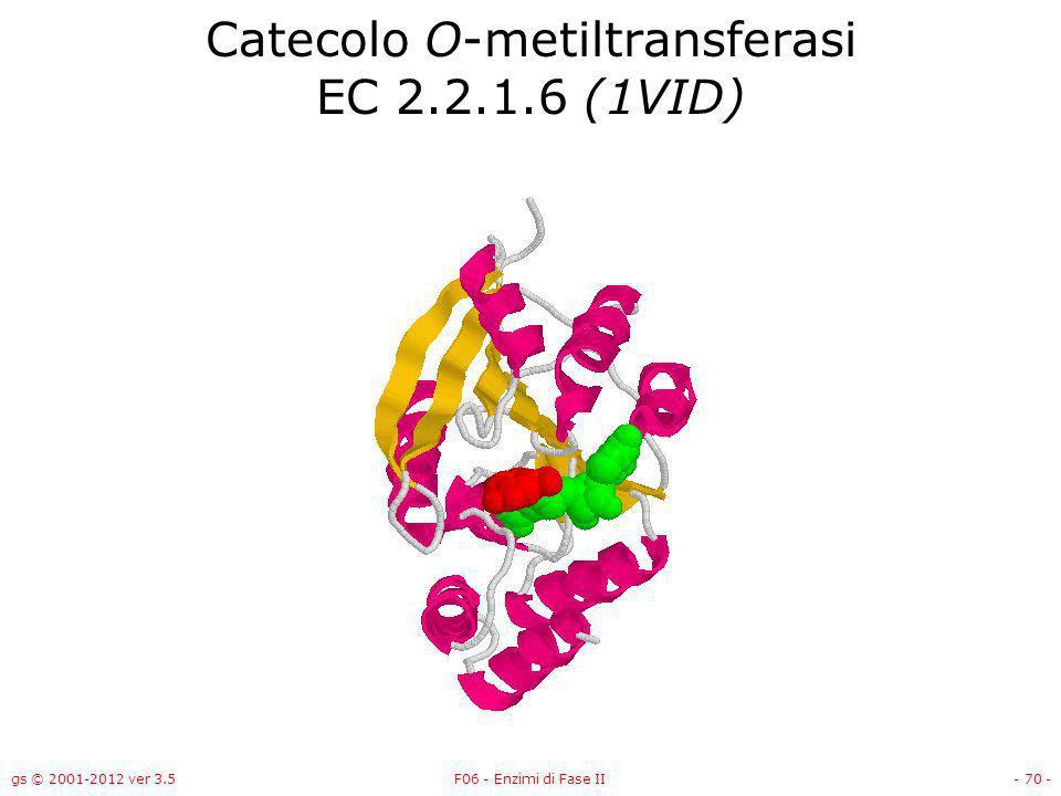 gs © 2001-2012 ver 3.5F06 - Enzimi di Fase II- 71 - Mercurio