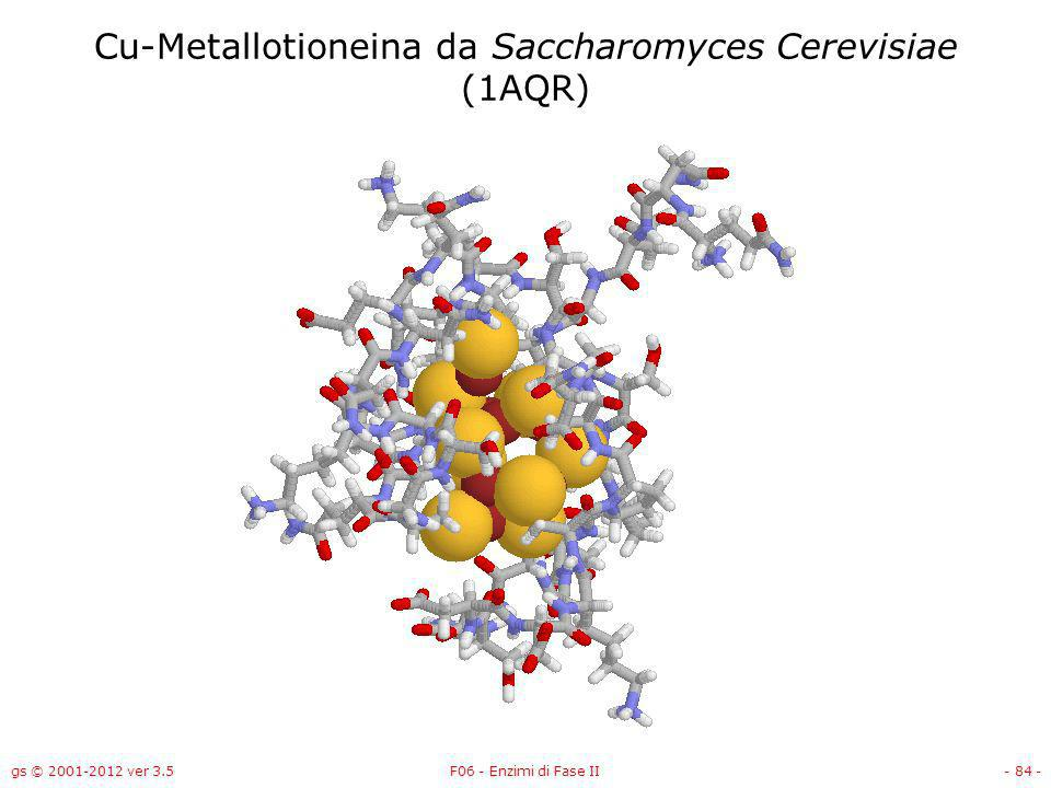 gs © 2001-2012 ver 3.5F06 - Enzimi di Fase II- 85 - Cu-Metallotioneina da Saccharomyces Cerevisiae (1AQR)