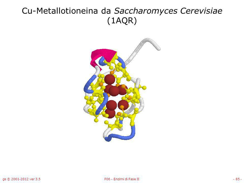 gs © 2001-2012 ver 3.5F06 - Enzimi di Fase II- 86 - Cd-Metallotioneina da Riccio di mare Subunità (1QJH)
