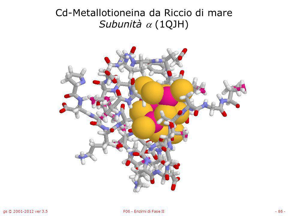gs © 2001-2012 ver 3.5F06 - Enzimi di Fase II- 87 - Cd-Metallotioneina da Riccio di mare Subunità (1QJH)