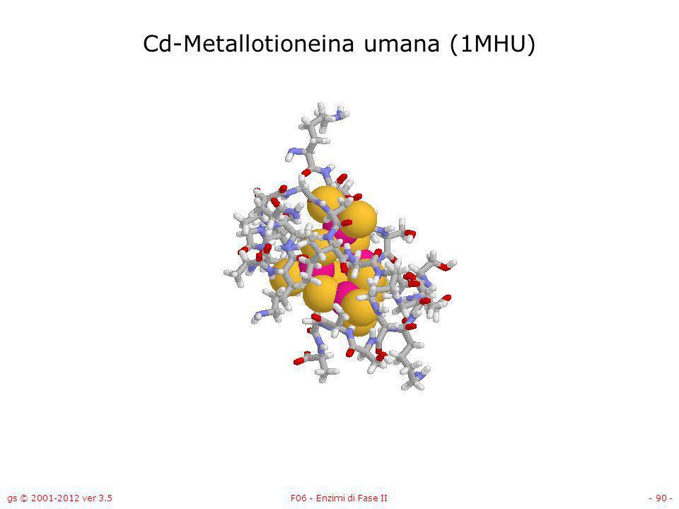 gs © 2001-2012 ver 3.5F06 - Enzimi di Fase II- 91 - Cd-Metallotioneina umana (1MHU)