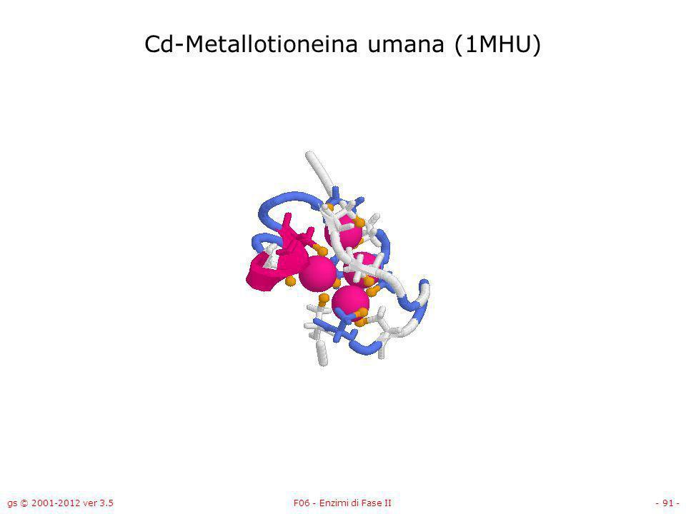 gs © 2001-2012 ver 3.5F06 - Enzimi di Fase II- 92 - Cd-Metallotioneina di Callinectes sapidus (1DMF)