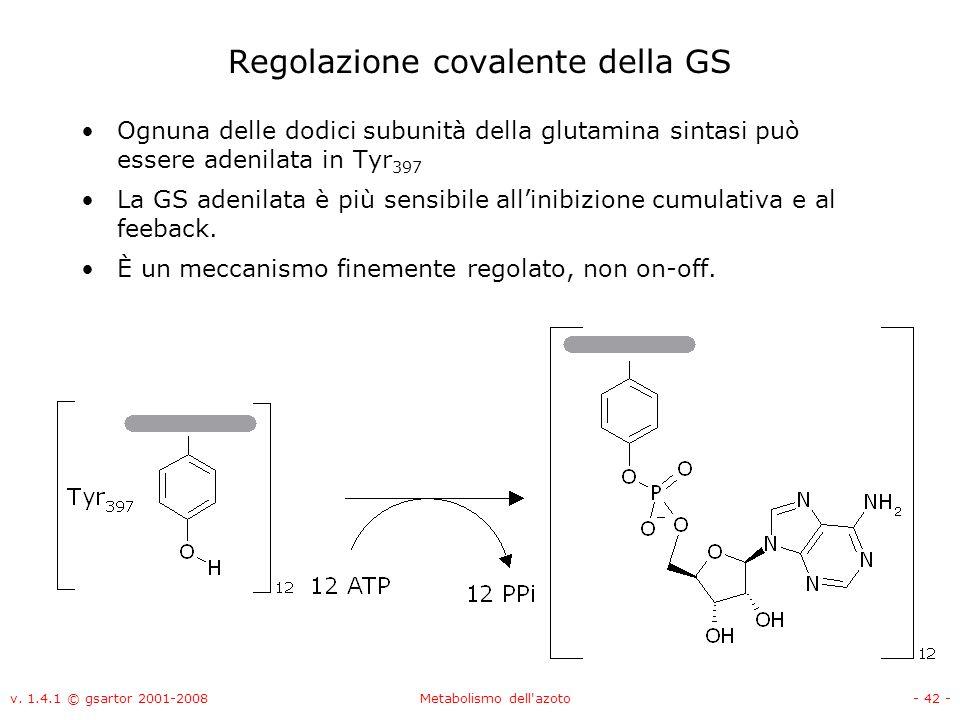 v. 1.4.1 © gsartor 2001-2008Metabolismo dell'azoto- 42 - Regolazione covalente della GS Ognuna delle dodici subunità della glutamina sintasi può esser