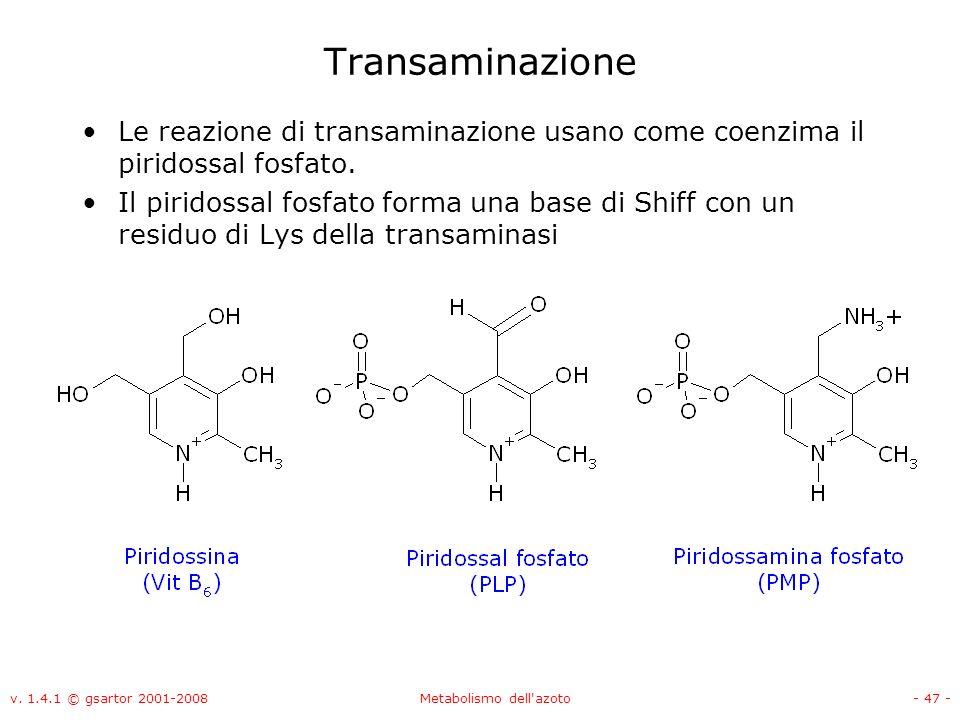 v. 1.4.1 © gsartor 2001-2008Metabolismo dell'azoto- 47 - Transaminazione Le reazione di transaminazione usano come coenzima il piridossal fosfato. Il
