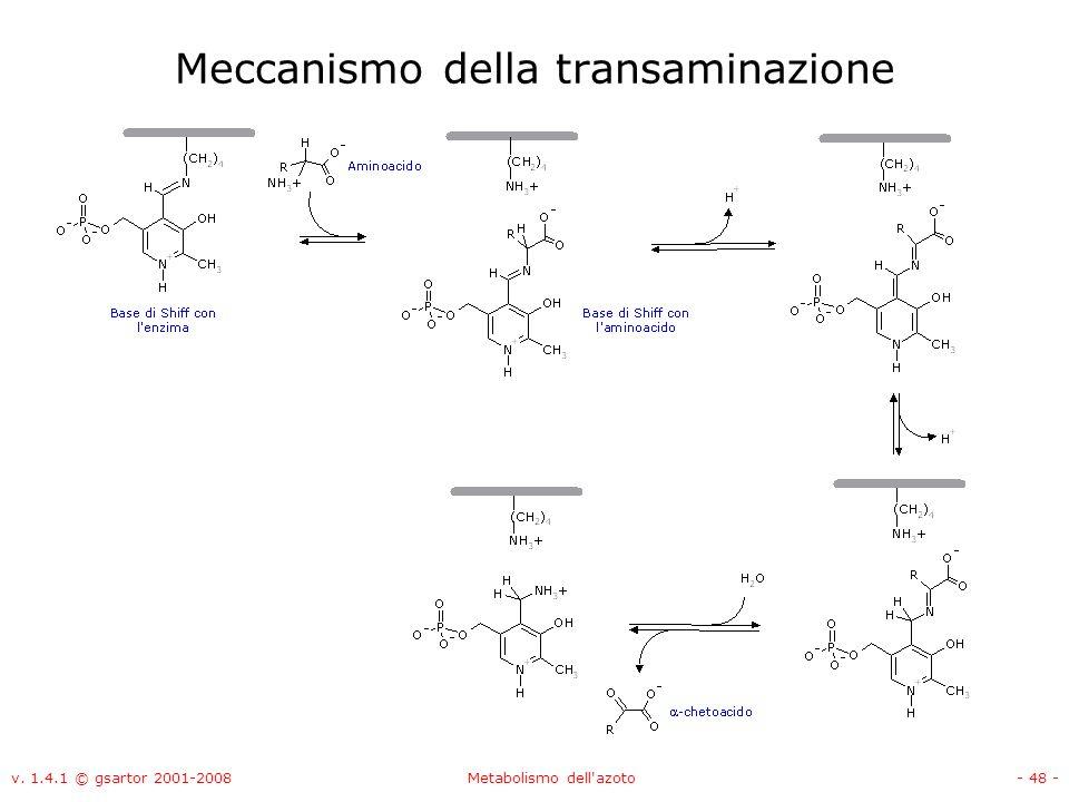 v. 1.4.1 © gsartor 2001-2008Metabolismo dell'azoto- 48 - Meccanismo della transaminazione