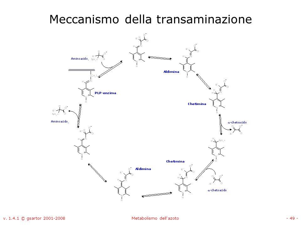 v. 1.4.1 © gsartor 2001-2008Metabolismo dell'azoto- 49 - Meccanismo della transaminazione