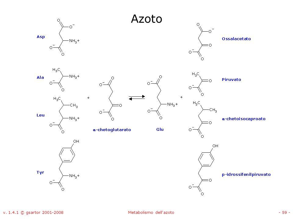 v. 1.4.1 © gsartor 2001-2008Metabolismo dell'azoto- 59 - Azoto