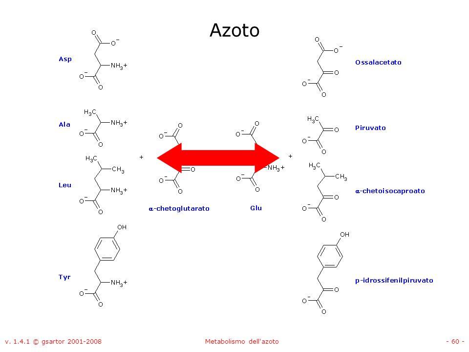 v. 1.4.1 © gsartor 2001-2008Metabolismo dell'azoto- 60 - Azoto