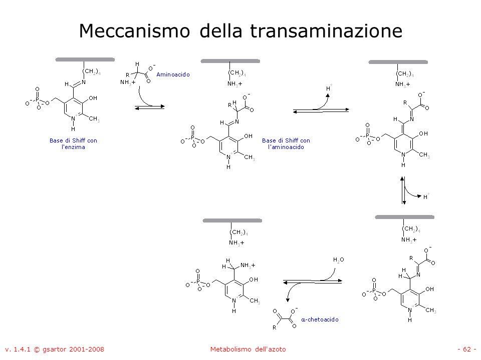 v. 1.4.1 © gsartor 2001-2008Metabolismo dell'azoto- 62 - Meccanismo della transaminazione