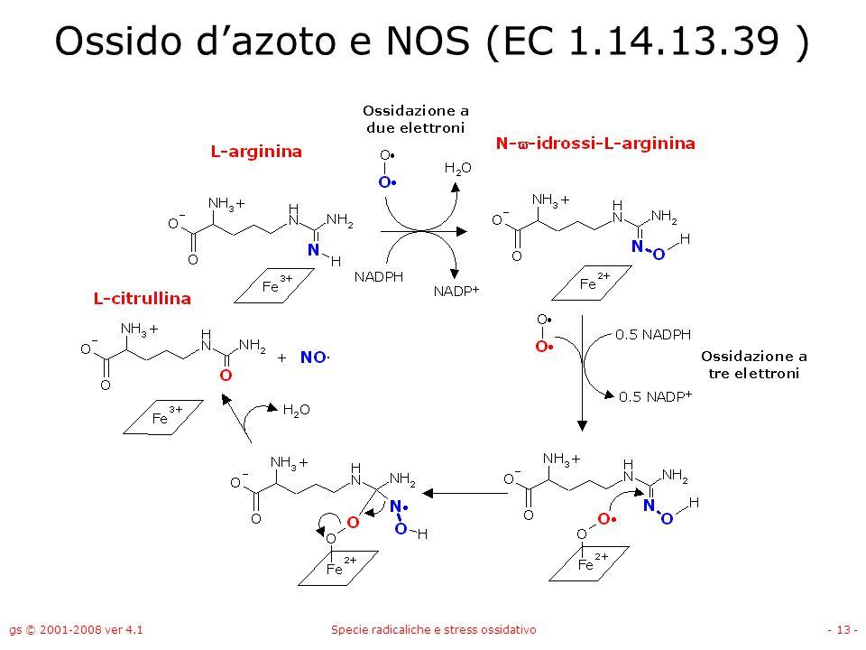 gs © 2001-2008 ver 4.1Specie radicaliche e stress ossidativo- 13 - Ossido dazoto e NOS (EC 1.14.13.39 )