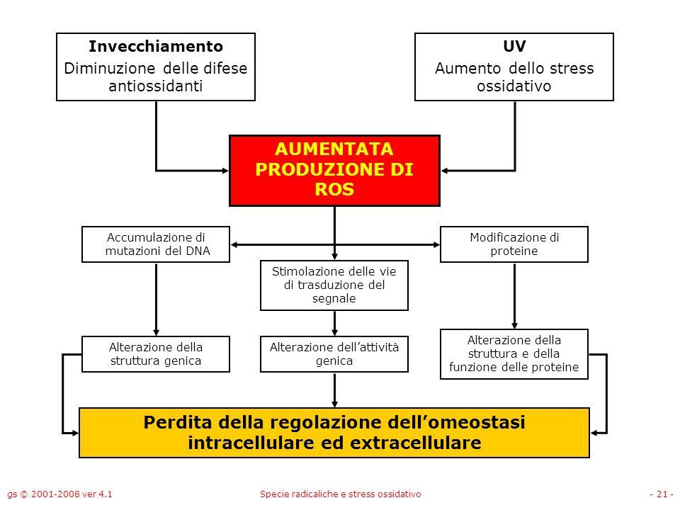 gs © 2001-2008 ver 4.1Specie radicaliche e stress ossidativo- 21 - Invecchiamento Diminuzione delle difese antiossidanti UV Aumento dello stress ossid