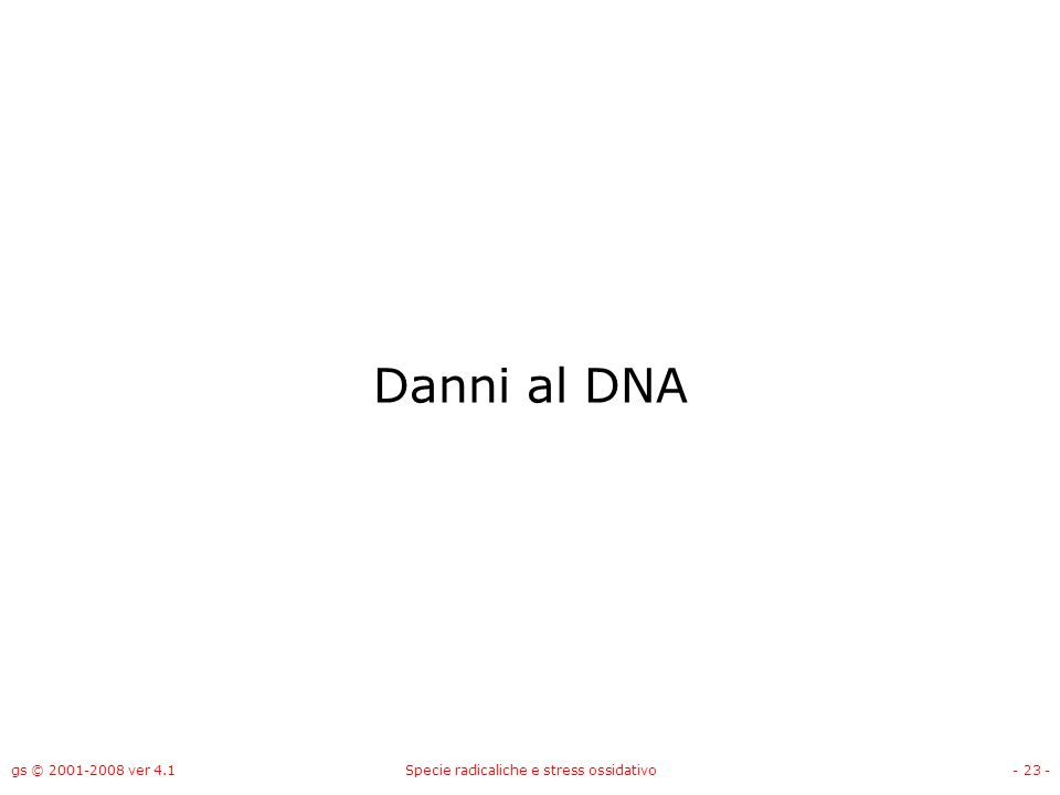 gs © 2001-2008 ver 4.1Specie radicaliche e stress ossidativo- 23 - Danni al DNA