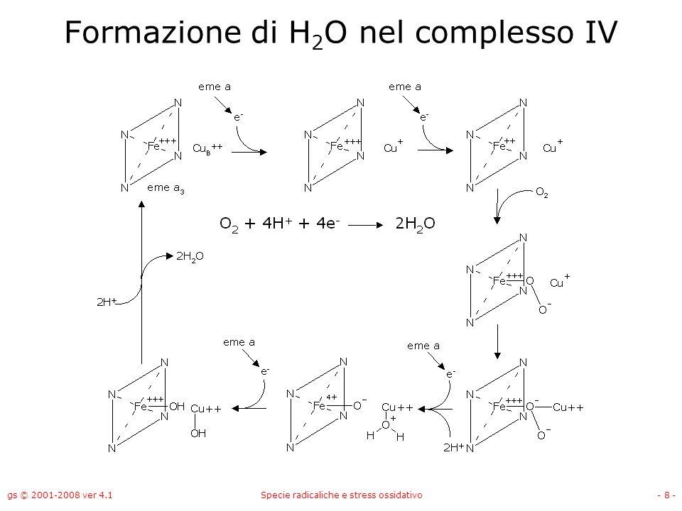 gs © 2001-2008 ver 4.1Specie radicaliche e stress ossidativo- 8 - Formazione di H 2 O nel complesso IV