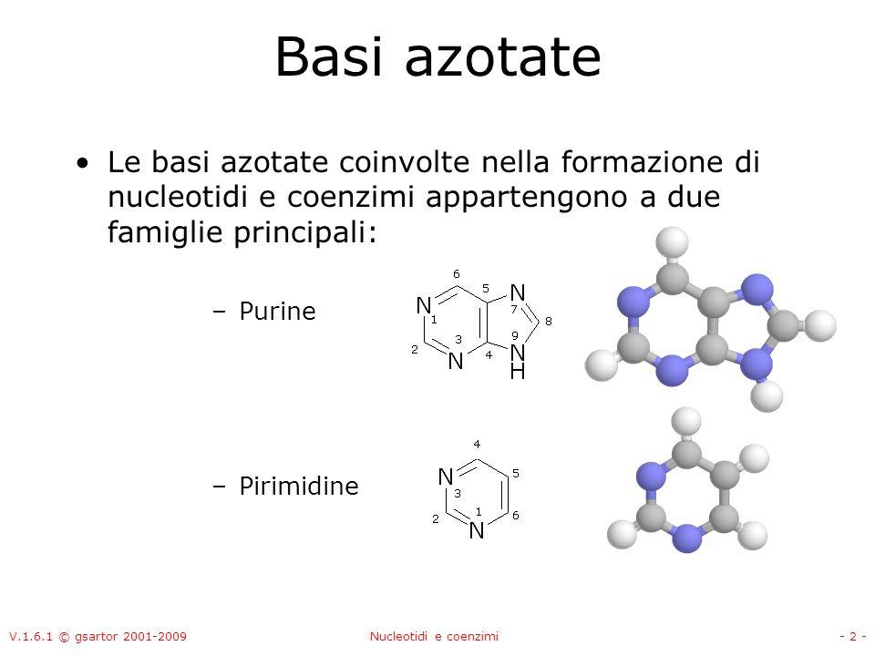 V.1.6.1 © gsartor 2001-2009Nucleotidi e coenzimi- 2 - Basi azotate Le basi azotate coinvolte nella formazione di nucleotidi e coenzimi appartengono a