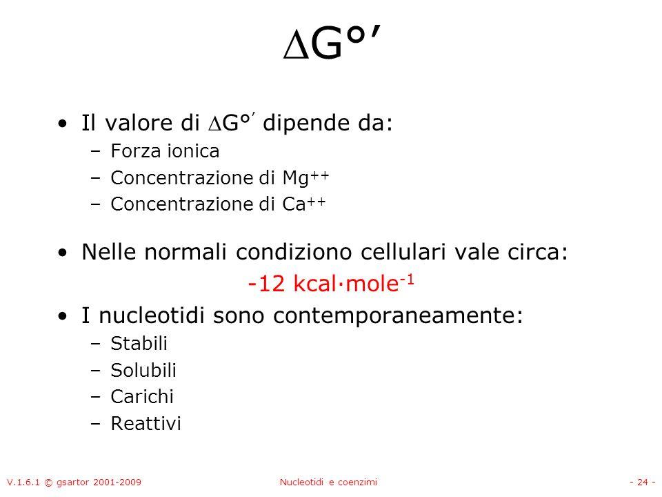 V.1.6.1 © gsartor 2001-2009Nucleotidi e coenzimi- 24 - G° Il valore di G° dipende da: –Forza ionica –Concentrazione di Mg ++ –Concentrazione di Ca ++