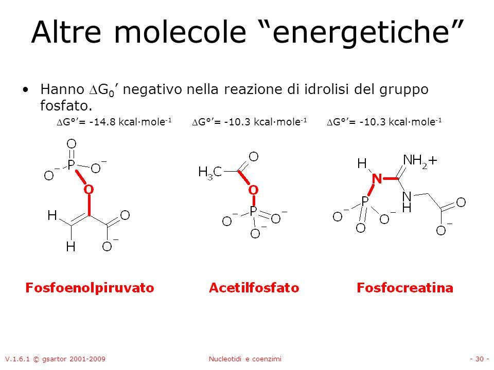 V.1.6.1 © gsartor 2001-2009Nucleotidi e coenzimi- 30 - Altre molecole energetiche Hanno G 0 negativo nella reazione di idrolisi del gruppo fosfato. G°