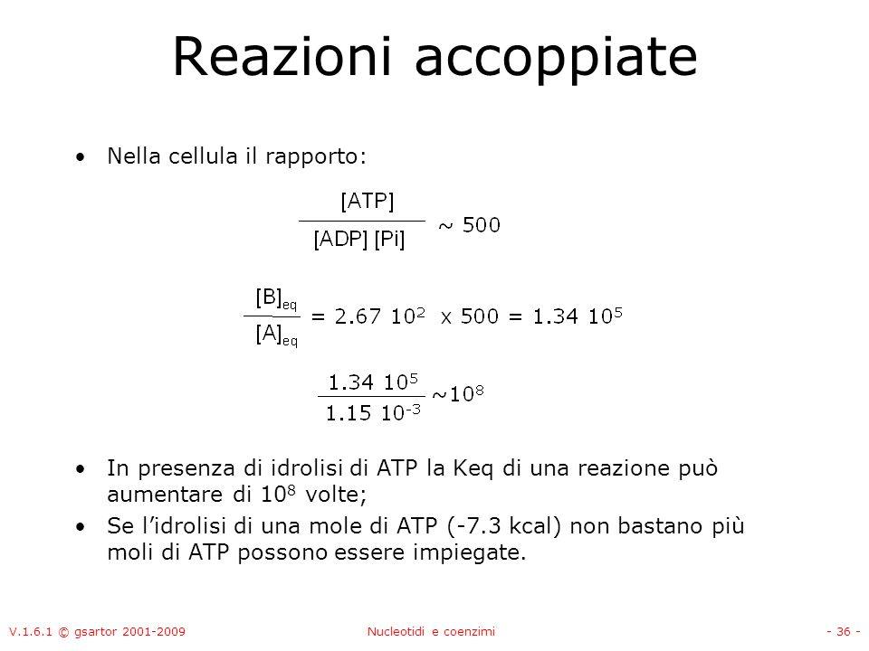 V.1.6.1 © gsartor 2001-2009Nucleotidi e coenzimi- 36 - Reazioni accoppiate Nella cellula il rapporto: In presenza di idrolisi di ATP la Keq di una rea