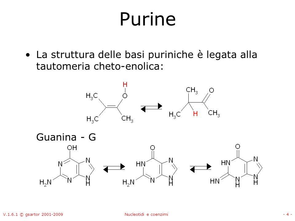 V.1.6.1 © gsartor 2001-2009Nucleotidi e coenzimi- 5 - Pirimidine Le basi pirimidiniche sono: Timina - T 2,4-diidrossi-5-metilpirimidina Citosina – C 2-idrossi-4-metilpirimidina Uracile - U 2,4-diidrossipirimidina